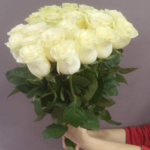 """21высокая белая роза """"Мондиаль"""""""