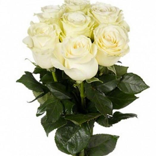 Букет из белых роз 7 штук