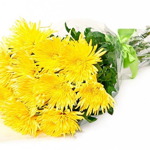 11 желтых крупных хризантем. Код 180046