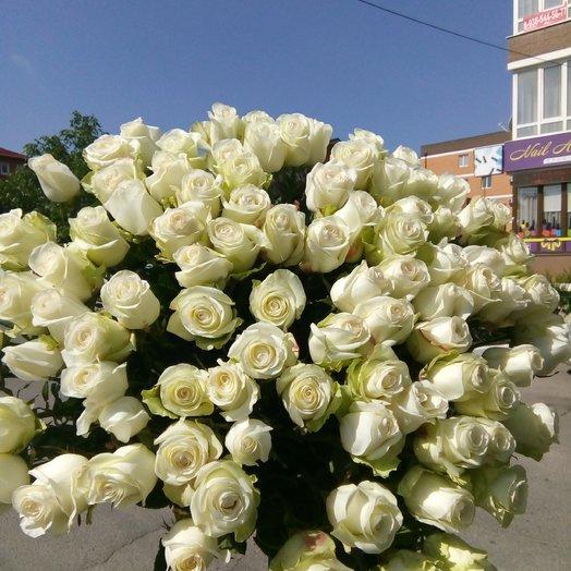 Букет 101 розы Мондиаль