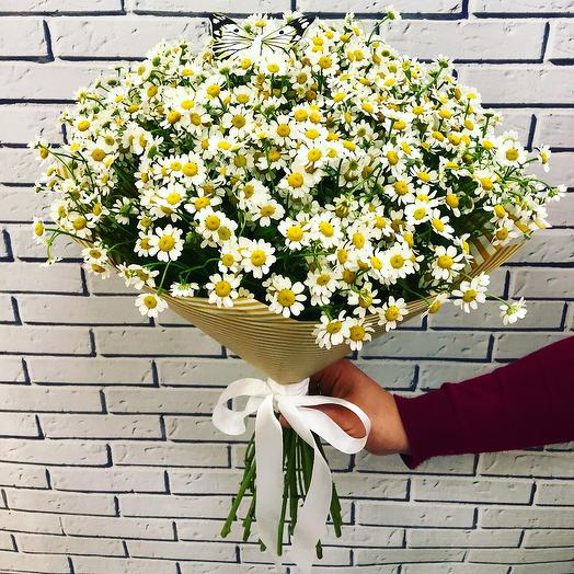 Букет Ромашки: букеты цветов на заказ Flowwow