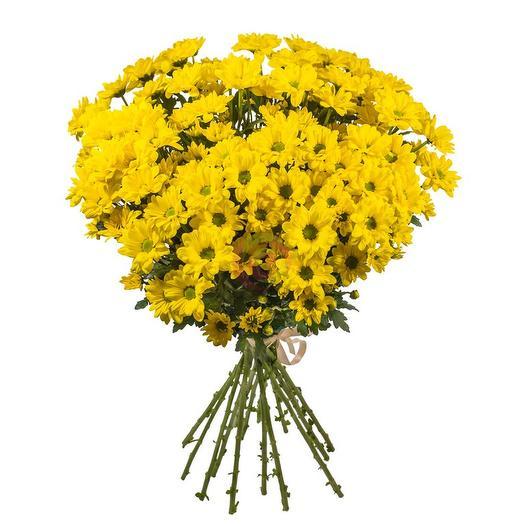 Букет жёлтых хризантем: букеты цветов на заказ Flowwow