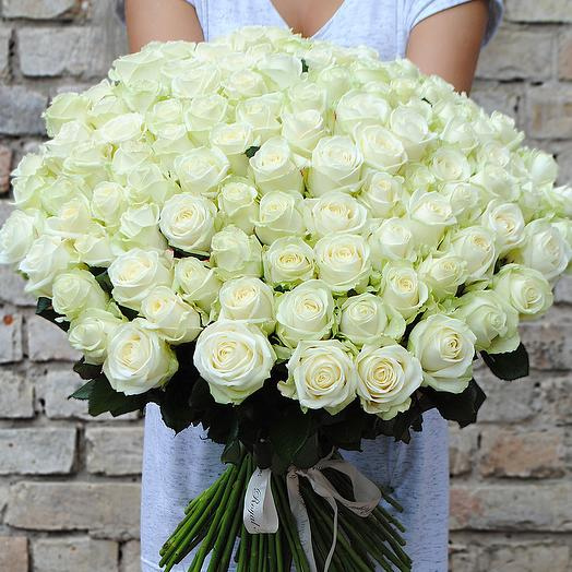 Акция! 101 белая роза (точно свежая)