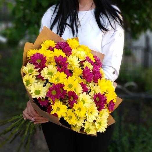 Bright day🌞 хризантемы кустовые микс желтые и малиновые