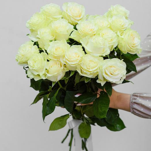 Букет из 19 белых роз Эквадор 60 см