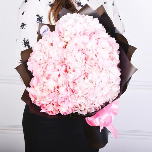 7 Розовых Гортензий