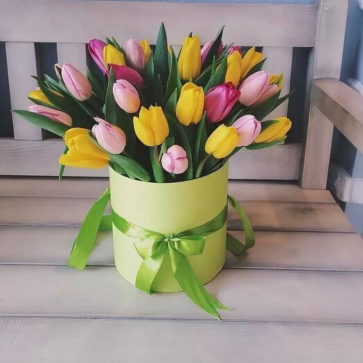 21 тюльпан в коробке