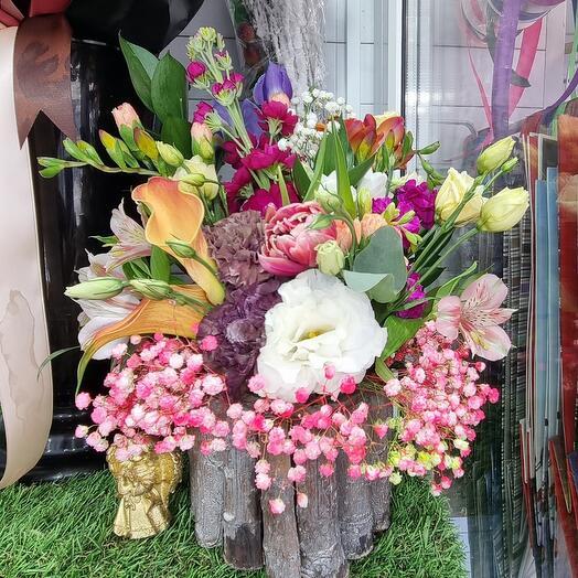 Цветы 🌍