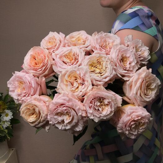 """Roses """" Shimmer»"""