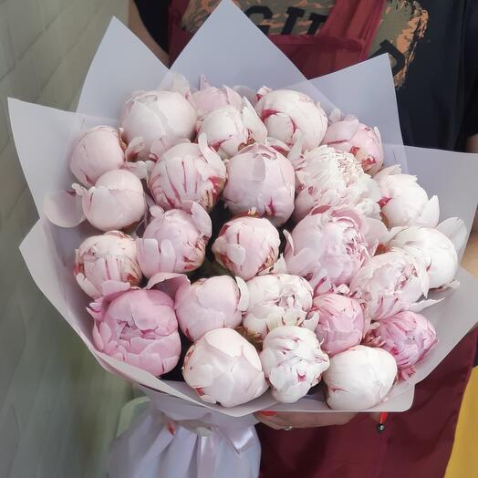 Розовая Пиономания