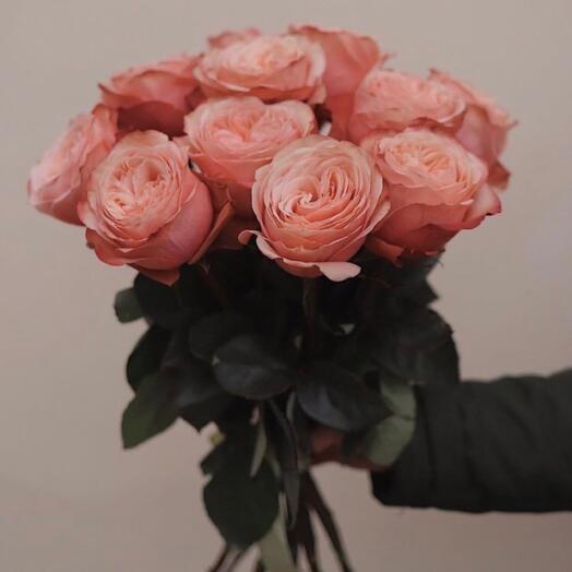 11 персиковых роз