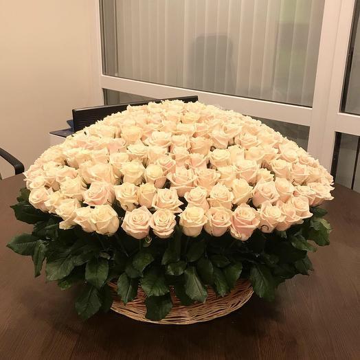 201 роза в корзине «Пломбир»: букеты цветов на заказ Flowwow