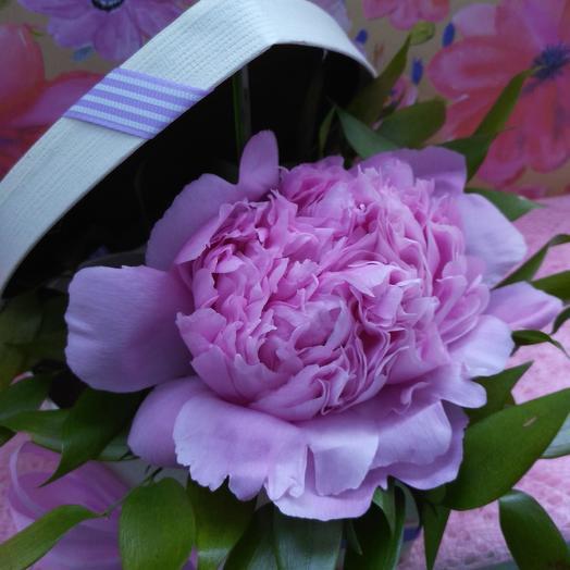 Великолепный пион: букеты цветов на заказ Flowwow