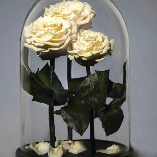 """Композиция """"Трио Белоснежка"""": букеты цветов на заказ Flowwow"""