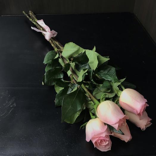 5 нежно розовых роз 70 см: букеты цветов на заказ Flowwow