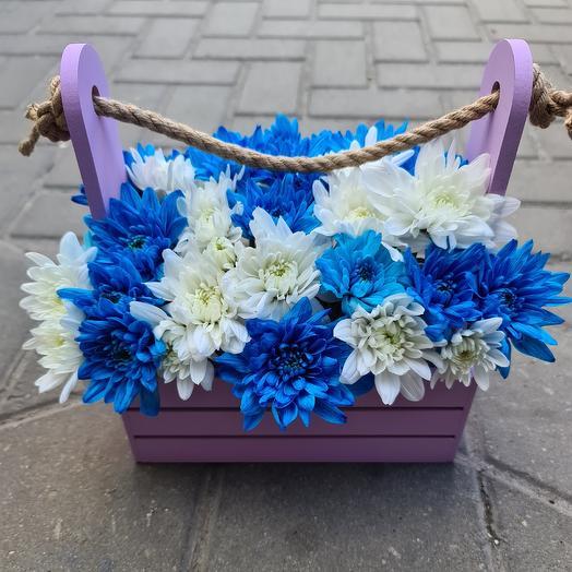 Ящик хризантем
