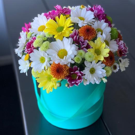Хризантема в шляпной коробке