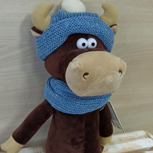 Бычок Василий в шарфе и шапке