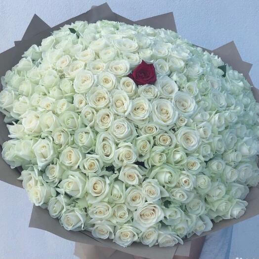 Букет 151 роза белая