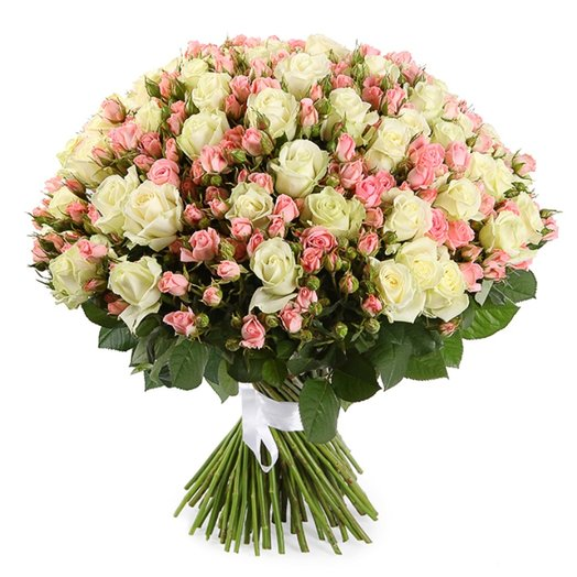 101 Кустовая роза Лидия и Аваланж