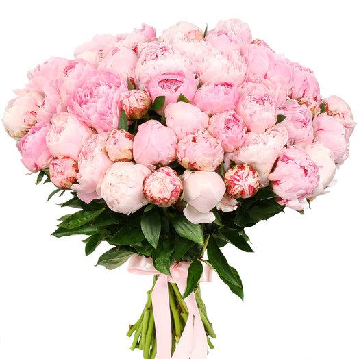 """Букет из 51 светло-розового пиона """"Сара Бернар"""": букеты цветов на заказ Flowwow"""