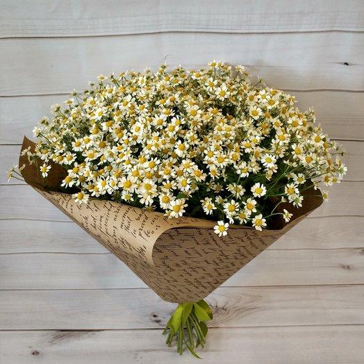 Ромашки: букеты цветов на заказ Flowwow