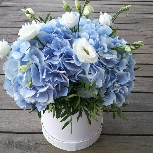 Гортензия в шляпной коробке: букеты цветов на заказ Flowwow