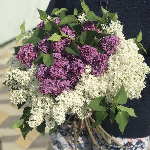 Аромат Весны: букеты цветов на заказ Flowwow