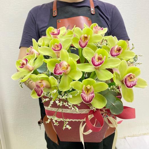 Орхидеи для БОССА🎊🎁☺️