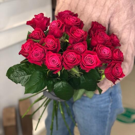 Розы шангрила