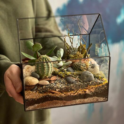 Флорариум Домик в пустыне