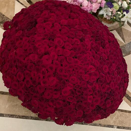 Роскошный букет из 1001 розы