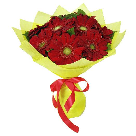 Букет Солнышко (классика, красное)  9шт: букеты цветов на заказ Flowwow