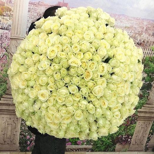 Букет из 301 розы Аваланж: букеты цветов на заказ Flowwow