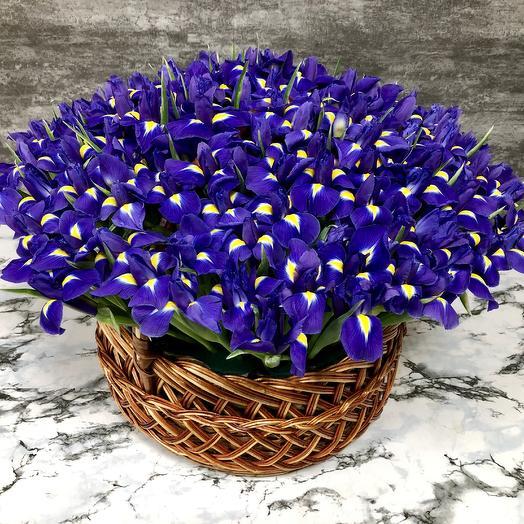 151 ирис в корзине: букеты цветов на заказ Flowwow