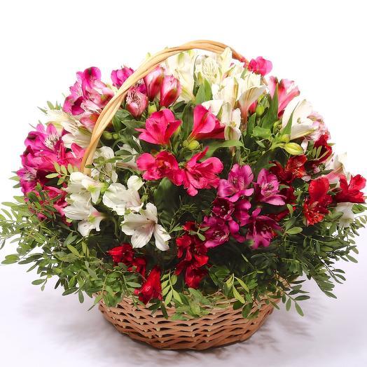 Корзина альстромерий: букеты цветов на заказ Flowwow