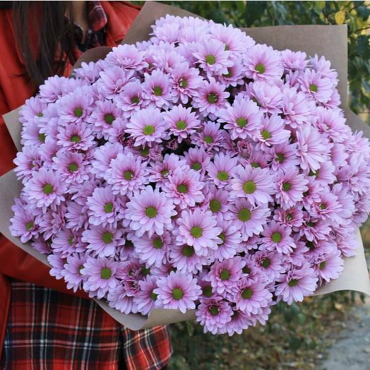 Розовое облако хризантем 💐🌸: букеты цветов на заказ Flowwow