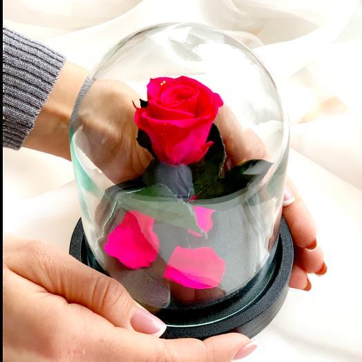 "Роза в колбе ""Дюймовочка"" розовая: букеты цветов на заказ Flowwow"