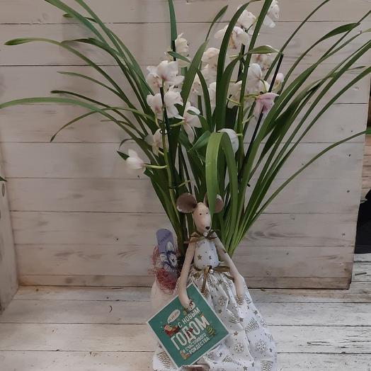 Красавица мышка с шикарной орхидеей: букеты цветов на заказ Flowwow