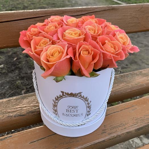 Коробка с розами «Мисс Пигги»