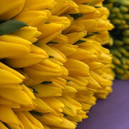 Тюльпан желтый 51шт