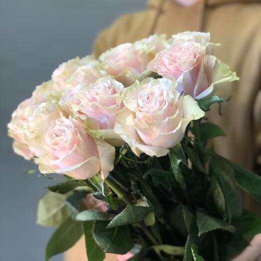 15 роз Пинк Мондиаль