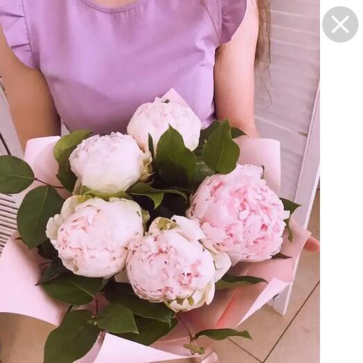5 розовых пионов Франция с рускусом