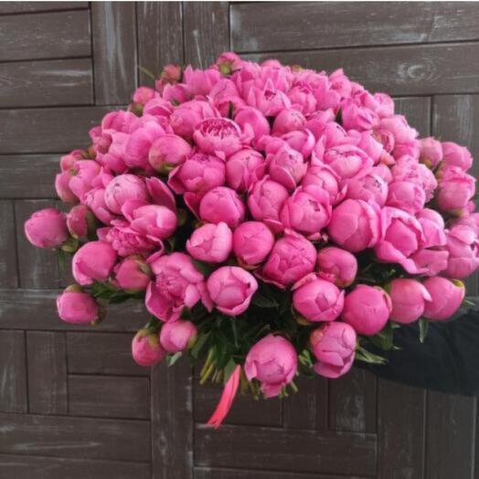 101 розовый пион