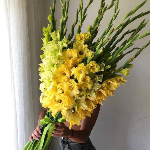 Гладиолусы желтые