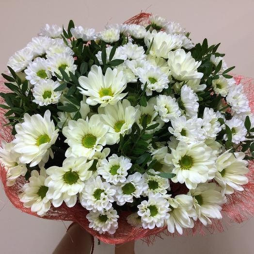 Заказ цветов с доставкой шебекино