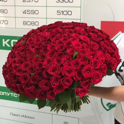 Букет из 201 розы: букеты цветов на заказ Flowwow
