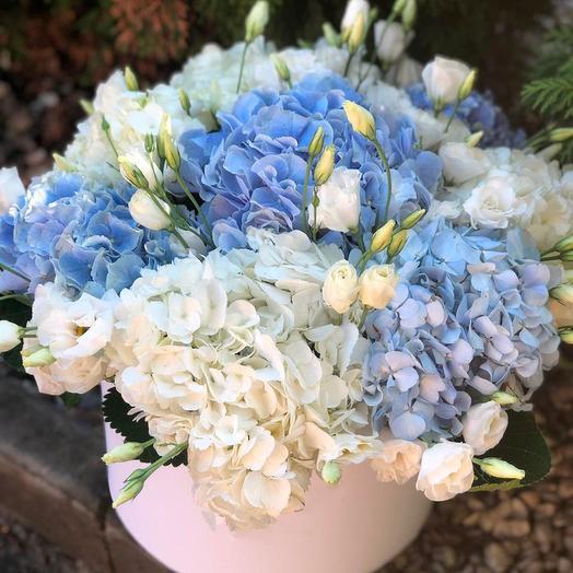 Воздушные облака гортензий в коробке: букеты цветов на заказ Flowwow