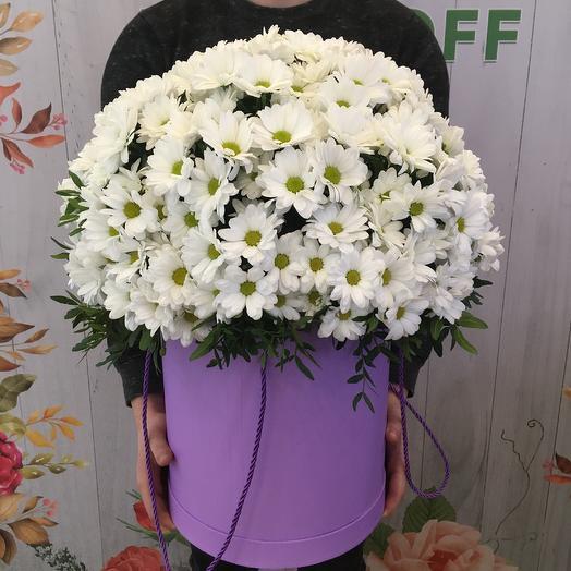 Ромашки в шляпной коробке: букеты цветов на заказ Flowwow