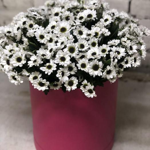 Сантини в коробке: букеты цветов на заказ Flowwow